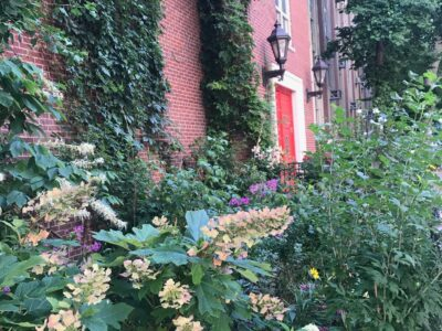PS6 Landscape Architecture - Upper East Side, NYC